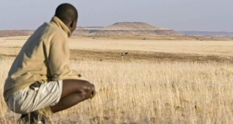 Wilderness Safaris bringt Afrika ins eigene Zuhause 22.01.21_1500