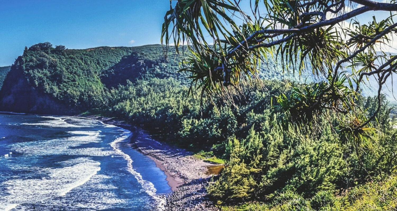 Trettl_Hawaii2_Fotor_2000