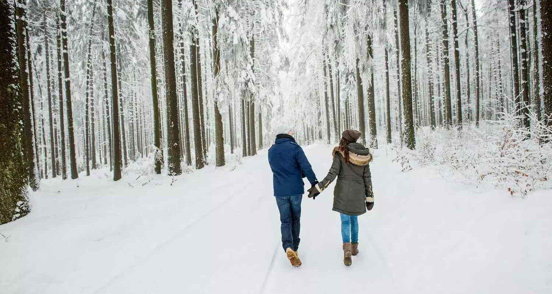 csm_Header_Winterwandern__c__Waldviertel_Tourismus_Studio_Kerschbaum_934c1aaec7