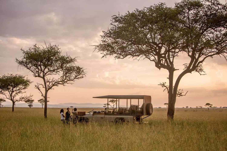 csm_Header_Serengeti_online-2_5103b4a685