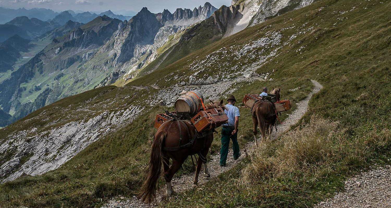 csm_Header_Whisky_Trek_Schweiz_d174a8c2d0